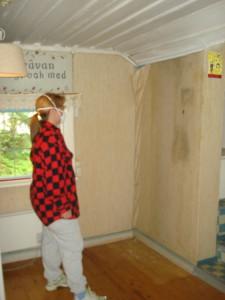 Fuktskadad vägg med mögel